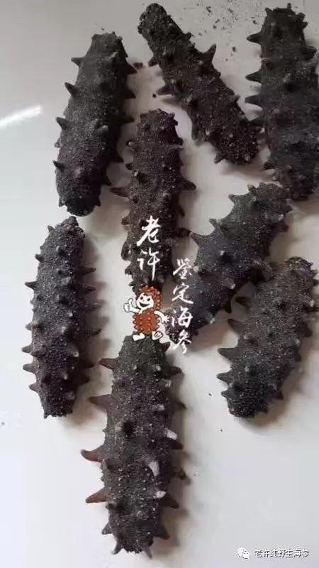 海参辨别教程10:糖干海参鉴别技巧