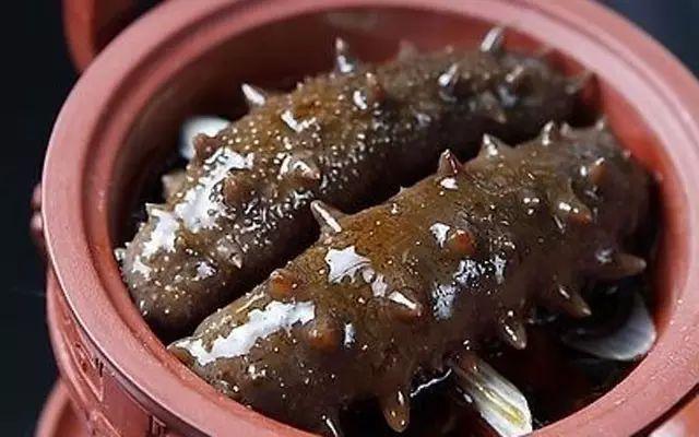 夏季最全海参吃法——珍藏版