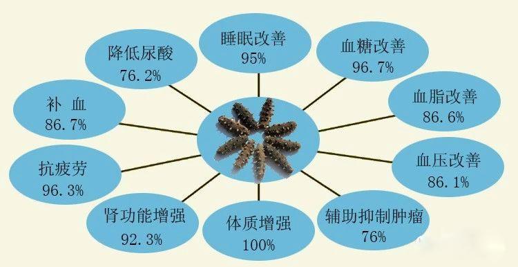 海参不同吃法不同功效,你了解了么?