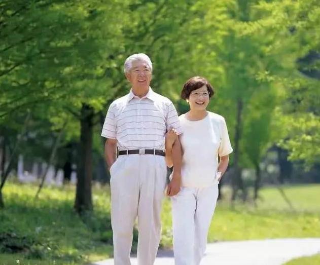 中老年人为什么要吃海参?究竟有什么好处?