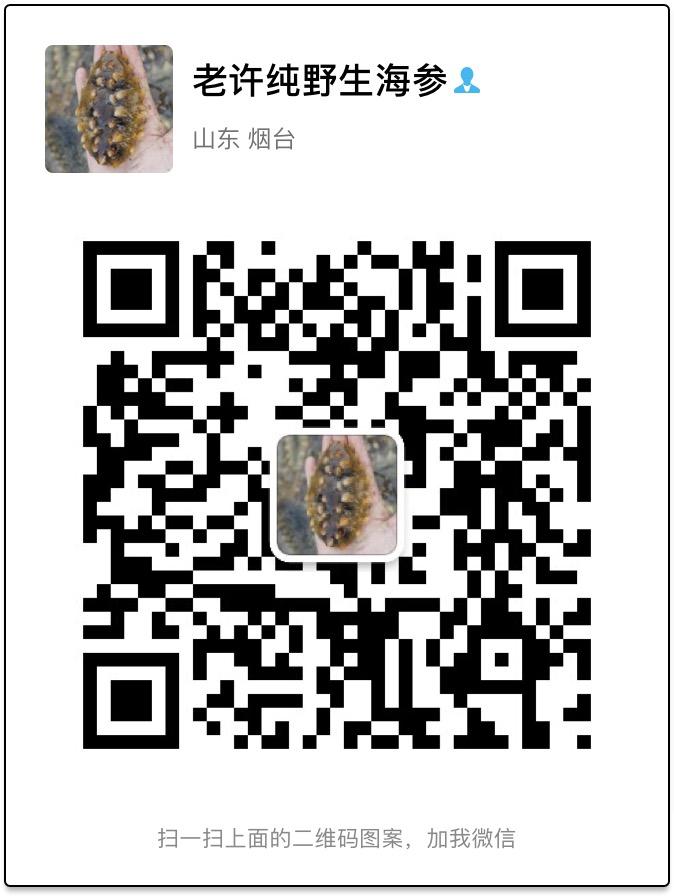 老许海参私人微信号.jpg